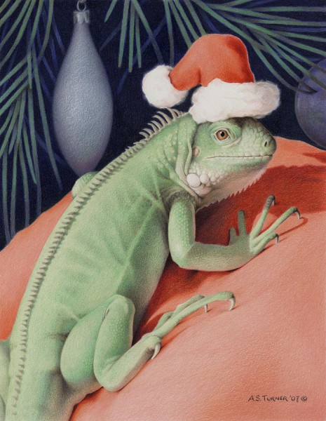 santa-claws--bob-the-lizard-amy-s-turner