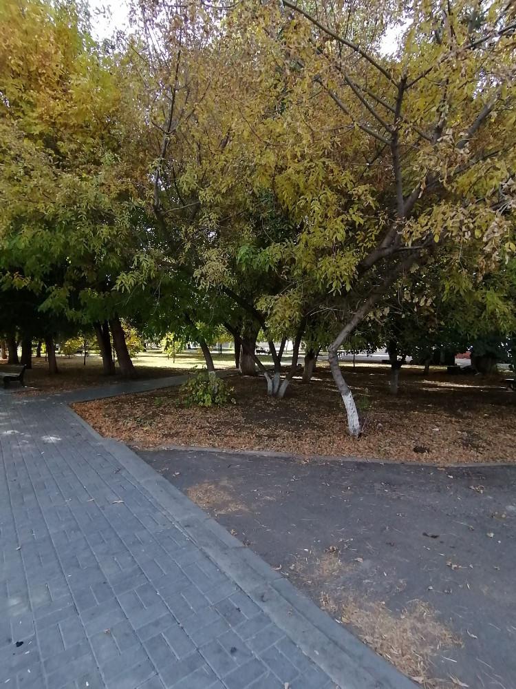 Спустились в парк
