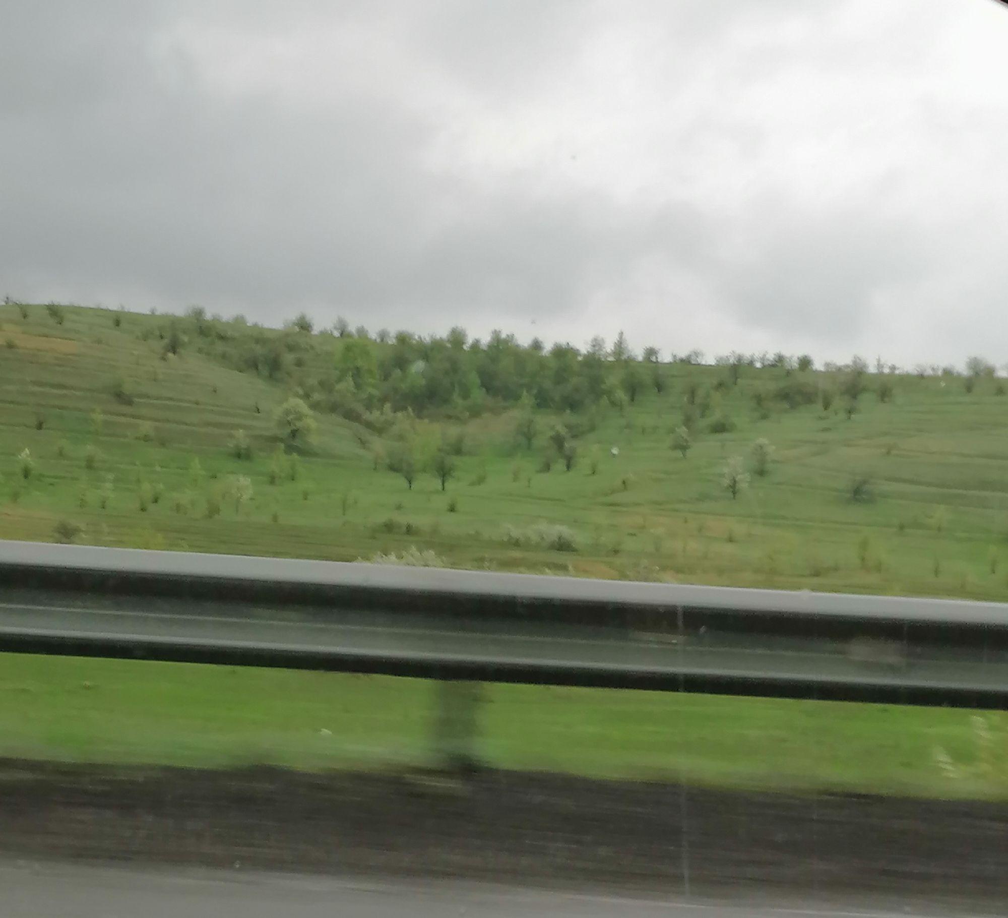 Умытые дождём поля
