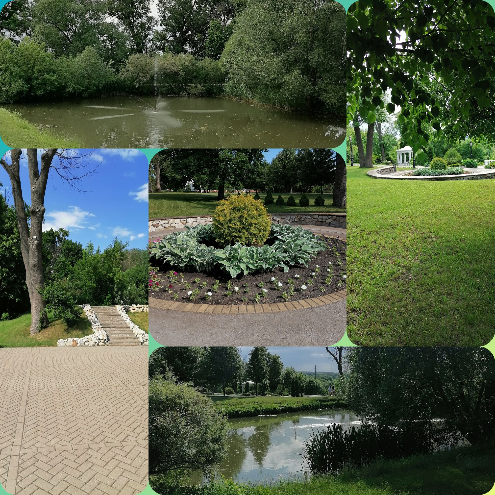 Виды парка