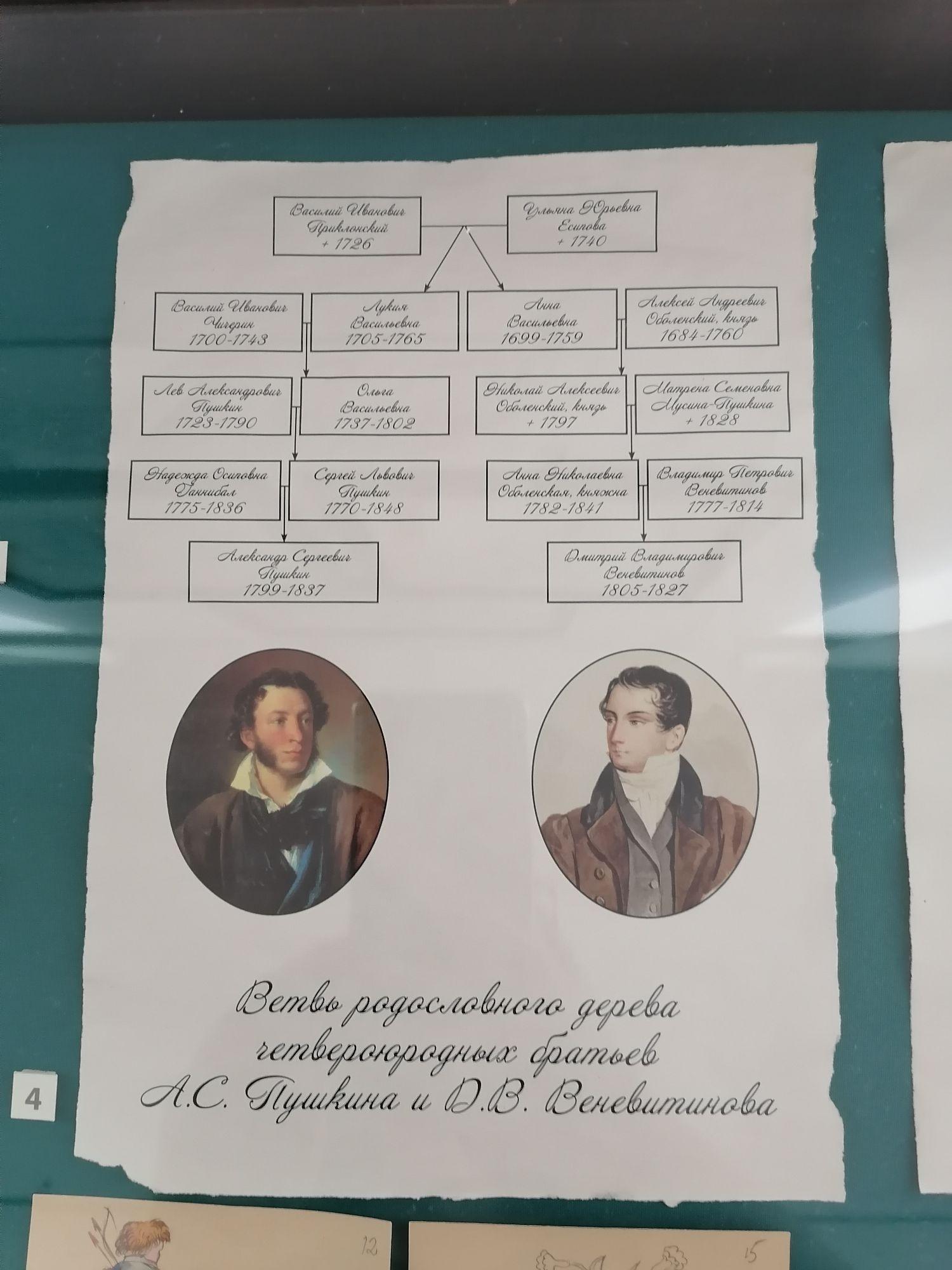 Ветвь родословного дерева Пушкина и Веневитинова
