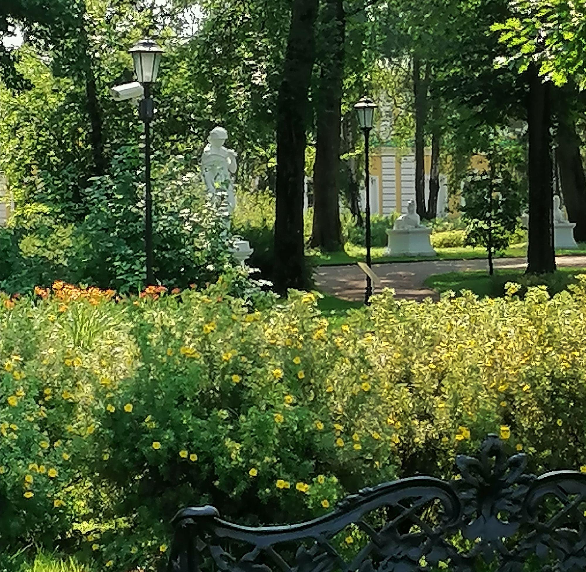 вид на парк со стороны набережной Михаила Ярославовича