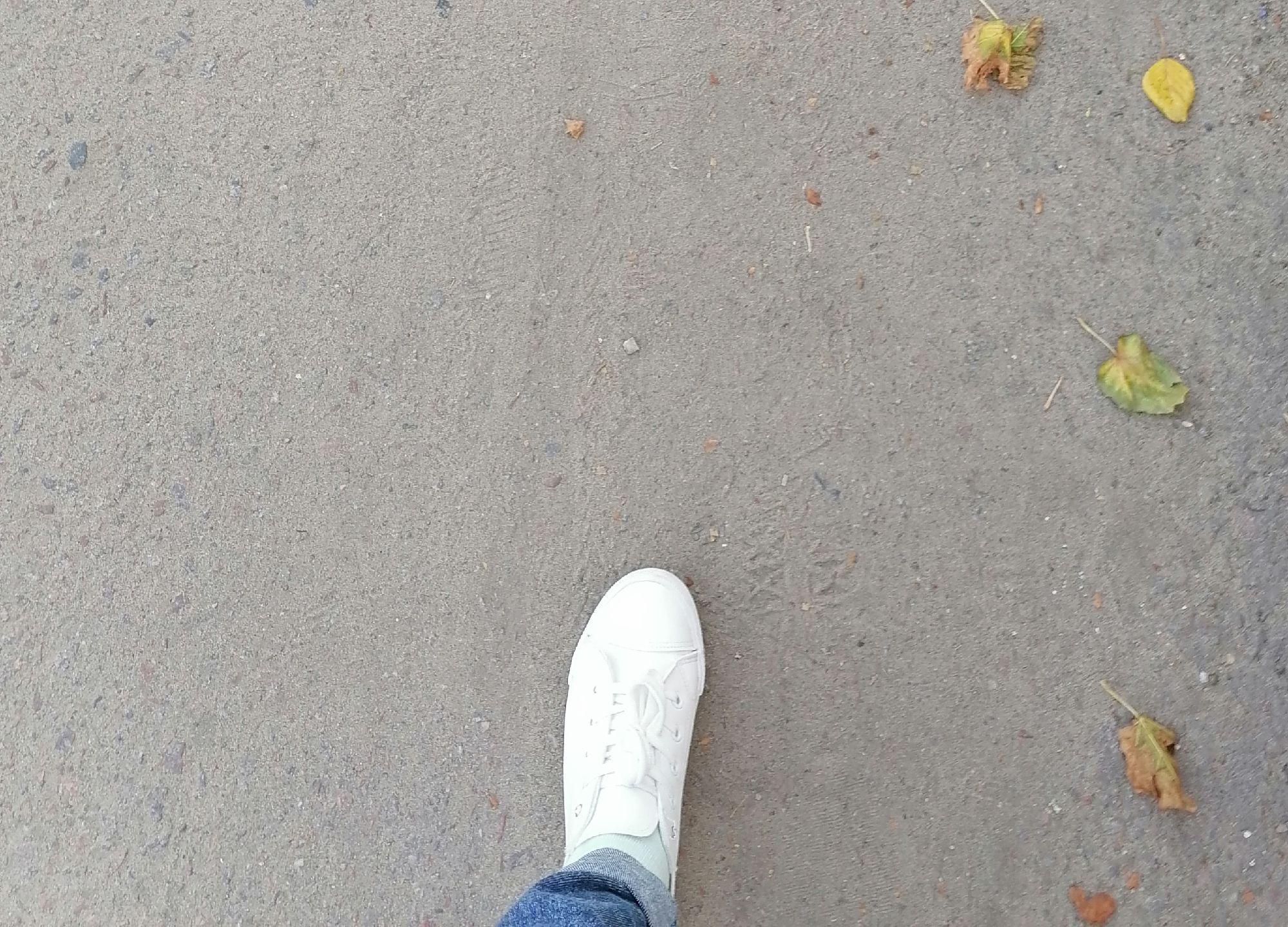 Сегодня тепло. Но все же... Одной ногой в осени...