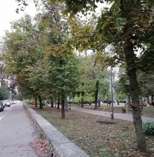 Осенний сквер