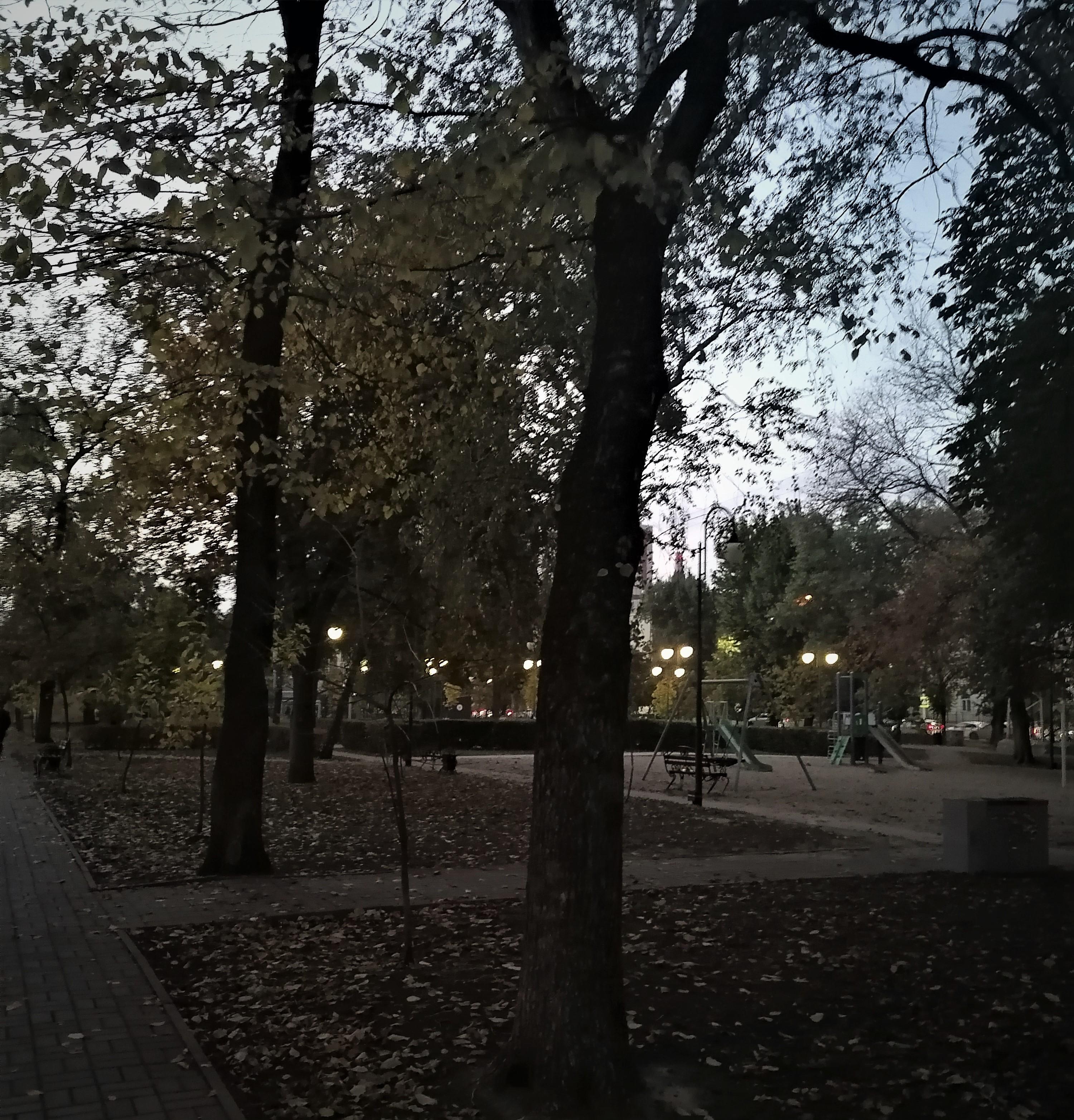 вечерний сквер в октябре