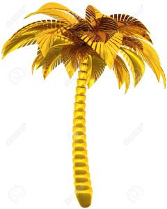 пальма7