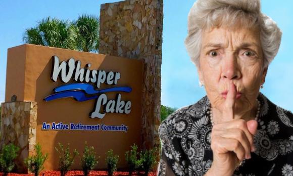 whisper banner 2.jpg
