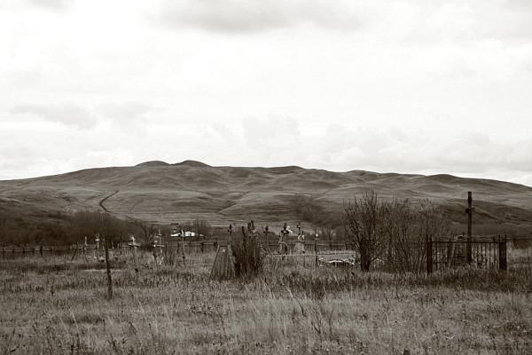 белые горы 074