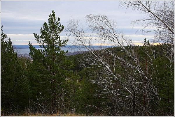 белые горы 407