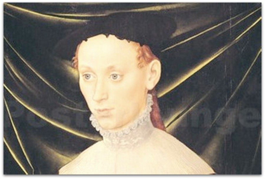 lucas-cranach-dae-woman-with-a-carnation-144815