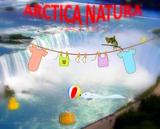 AN Niagara Falls
