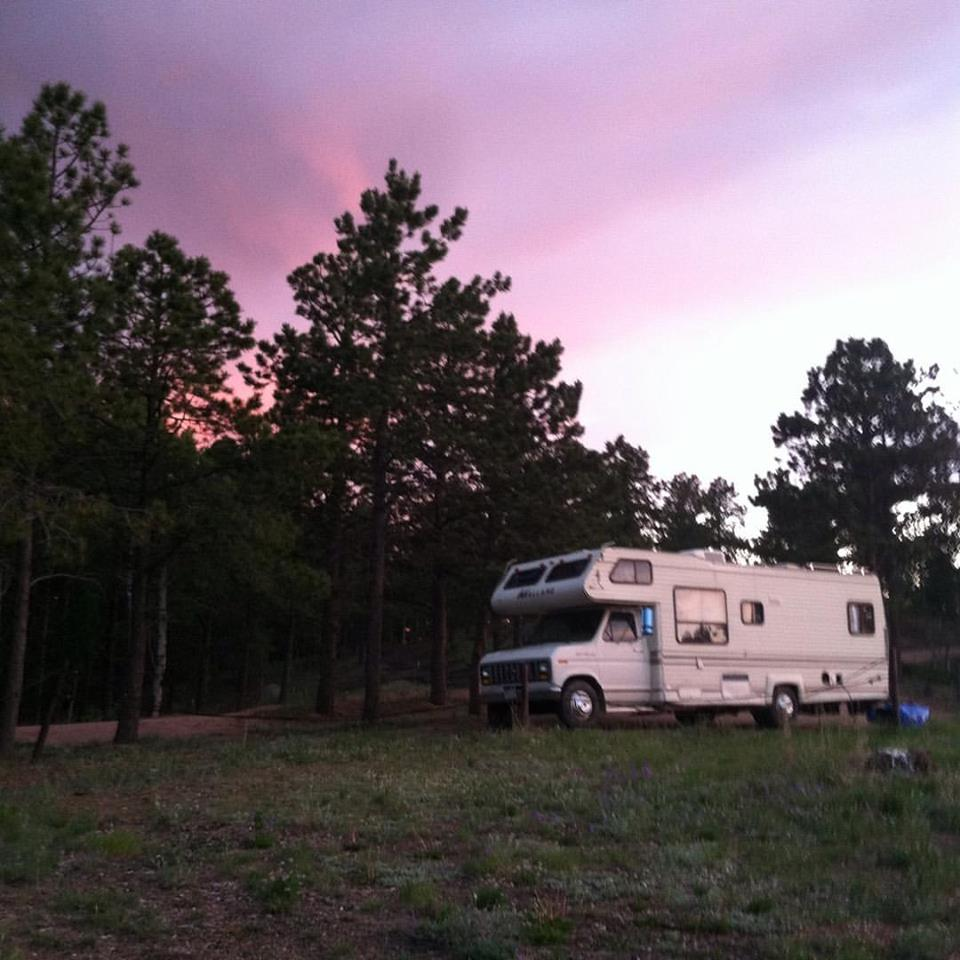 Lamia at Pike National Forest