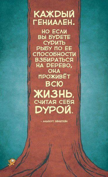 1150929_505332912891326_280031003_n