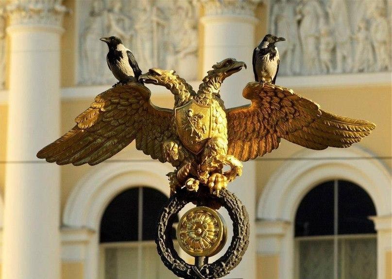 орёл и вороны