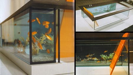 ванна с рыбками