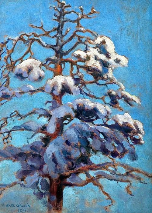 Akseli Gallen-Kallela -  Snowy Fir