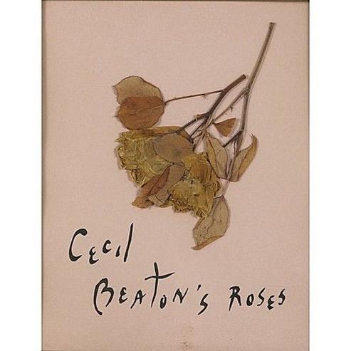 Cecil Beaton - Cecil Beaton's Roses
