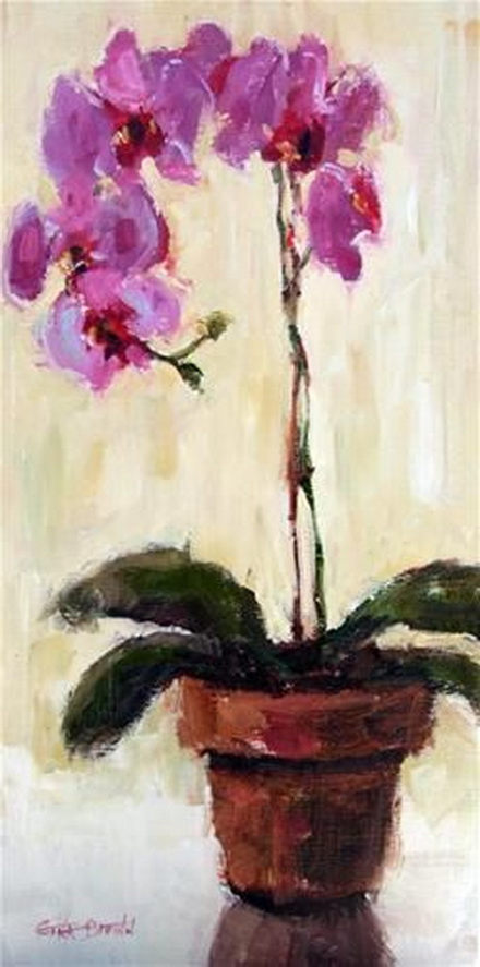 Gina Brown - Mothers Orchid