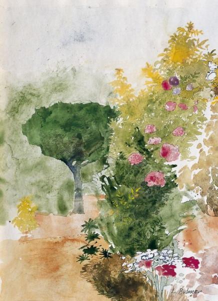 Lionel Bulmer - Garden Roses