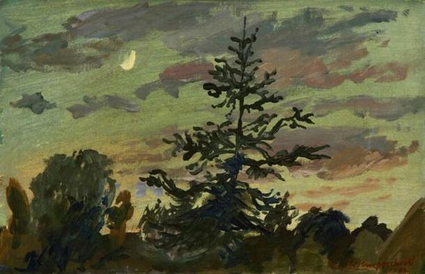 Theo Kurpershoek - moon night