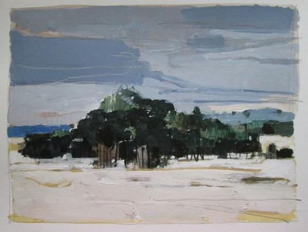 Harry Stooshinoff - February Landscape