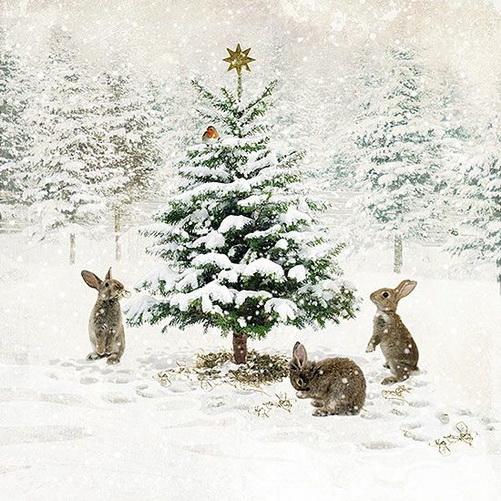 Jane Crowther - Three Bunnies