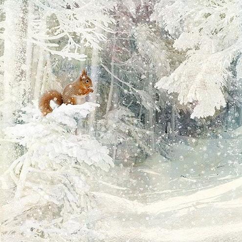Jane Crowther - Snow Squirrel