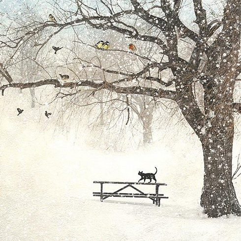 Jane Crowther - Cat Bench
