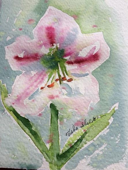 Tisha Sheldon - Apple Blossom