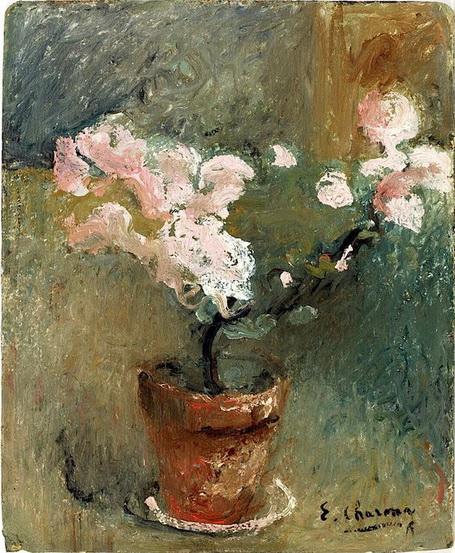 Emilie Charmy -  Pot de fleurs
