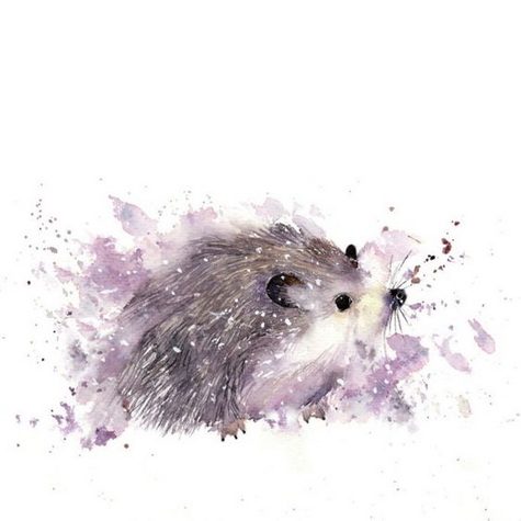 Rachel McNaughton - Hedgehog