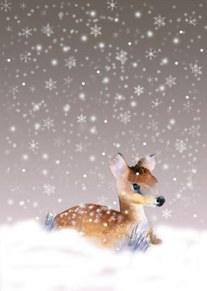 Rachel McNaughton - Snowflake Deer