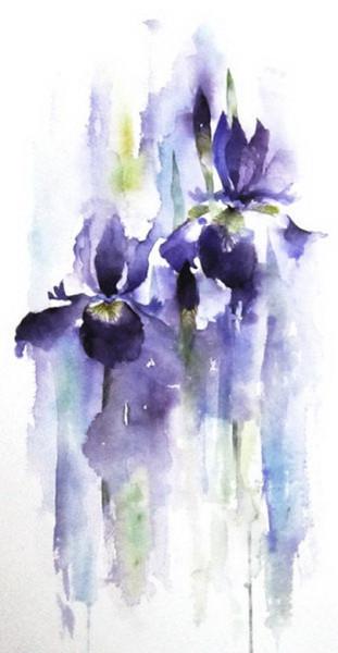 Rachel McNaughton - splashy iris