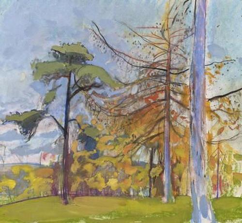 Duncan Shanks -  Park Trees
