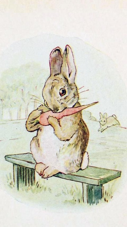 Beatrix Potter - illustrations goose