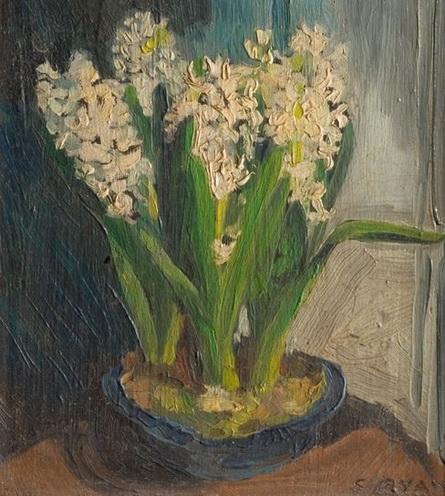 Sally Ryan - Hyacinths