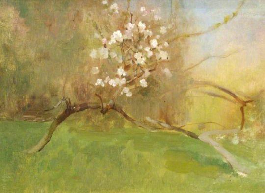 Benjamin Haughton -  Cherry Blossom