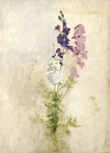 Benjamin Haughton - Cluster of flowers