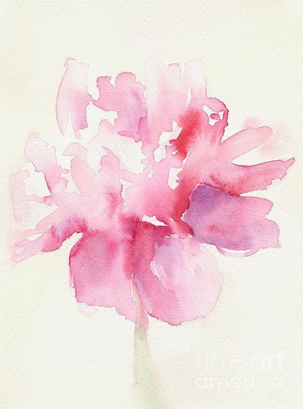 Beverly Brown  - Pink Peony