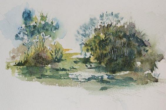 Vandy Massey - Wetlands