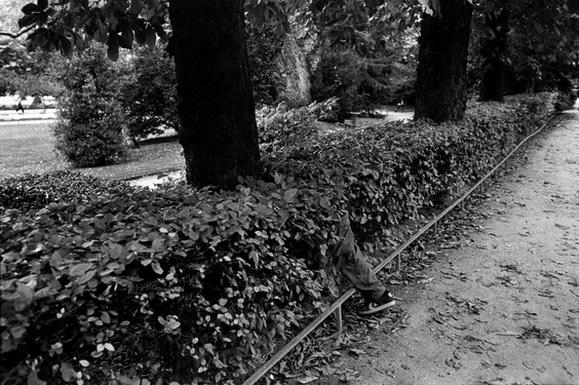 Richard Kalvar Luxembourg gardens