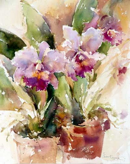 Janet Rogers - Orchids