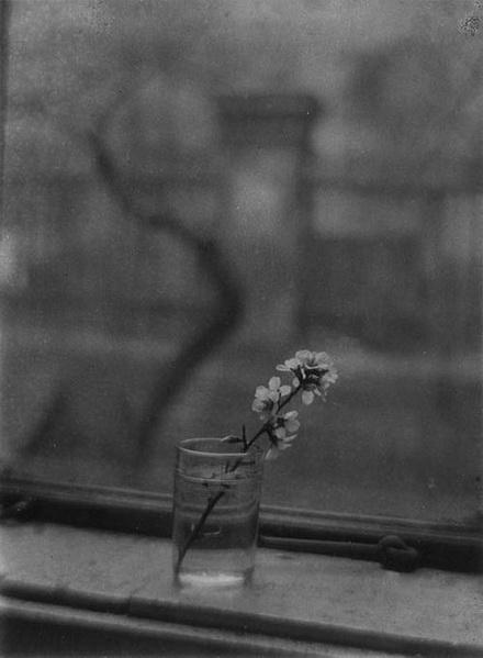 Josef Sudek Bouquet