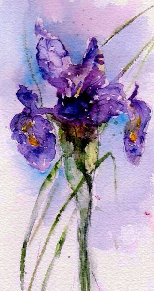 anne duke - Dutch Iris