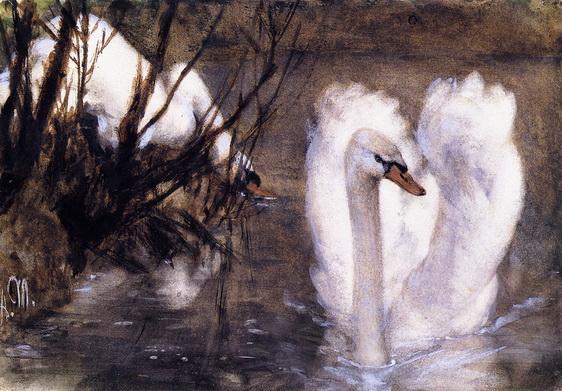 Adolph von Menzel  - Two Swans