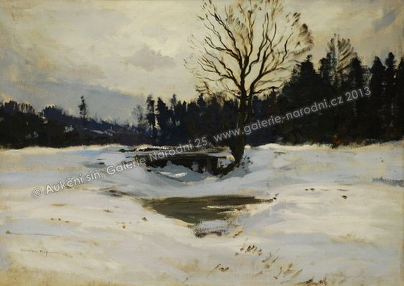 Gustav Macoun  - Winter mood