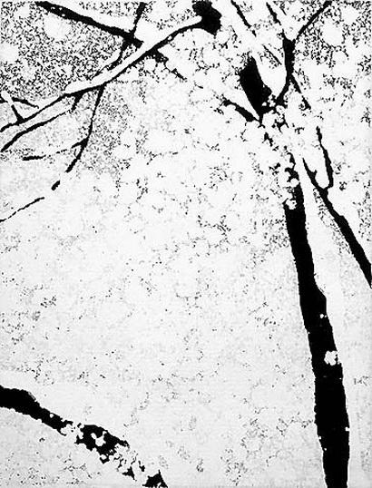 Vojtech Preissig - Snow Covered Trees