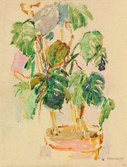 Oskar Kokoschka - Philodendron