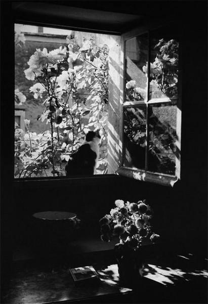 Edouard Boubat -  Sans titre. 1972