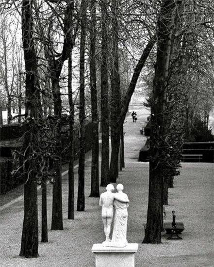 Edouard Boubat - Parc de Saint-Cloud, 1981
